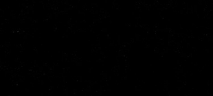 310 - Siyah